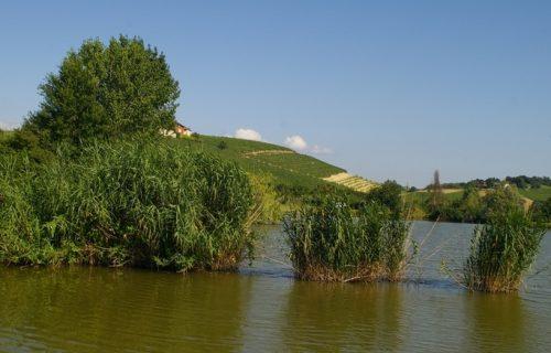Paesaggio del Comune di Calosso Regione Paludo (AT)