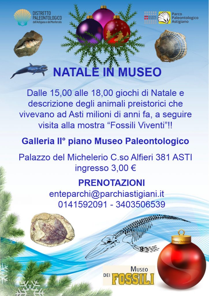Natale in museo